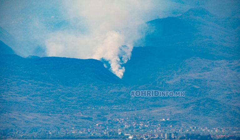 Фото/Видео: Голем пожар на Јабланица