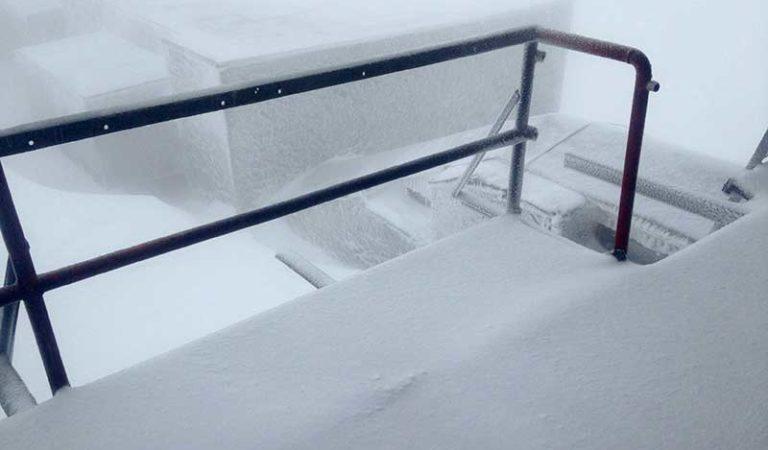 Фото: Утринава нов снег на Пелистер