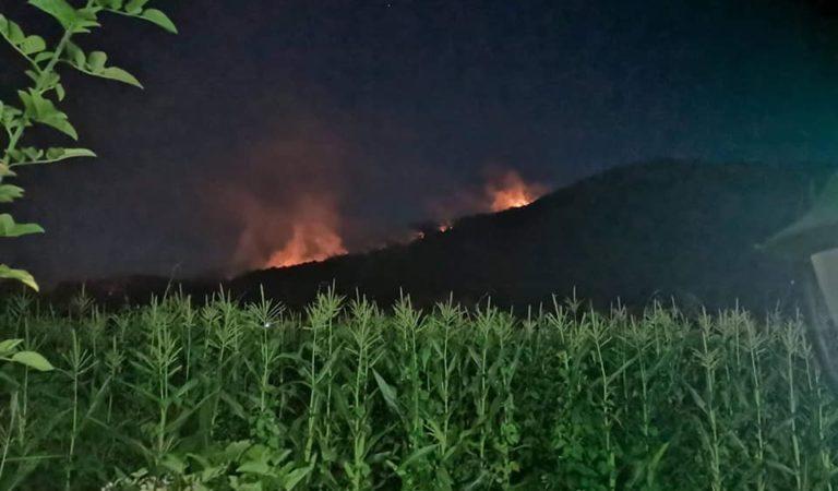 Фото: Шумскиот пожар кај Велмеј сеуште вон контрола