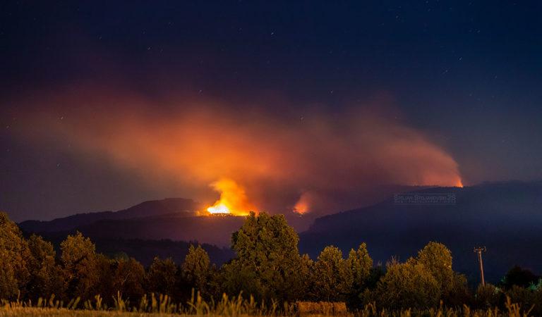 Фото: Шумски пожар во близина на Охрид